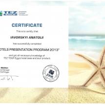 сертификат13